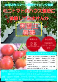 スマート園芸チャレンジチラシ.jpg